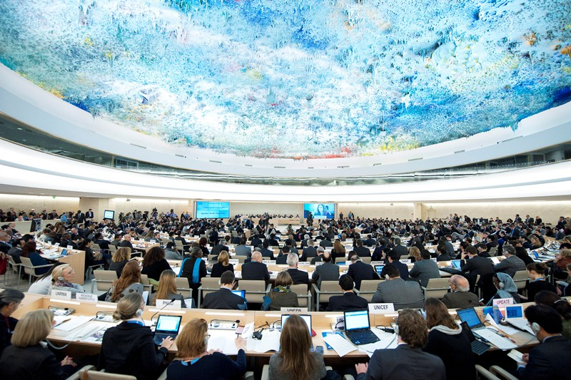 Human Rights Council 19th session